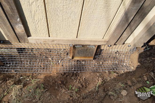 Hamilton Skunk Shed One Way Door